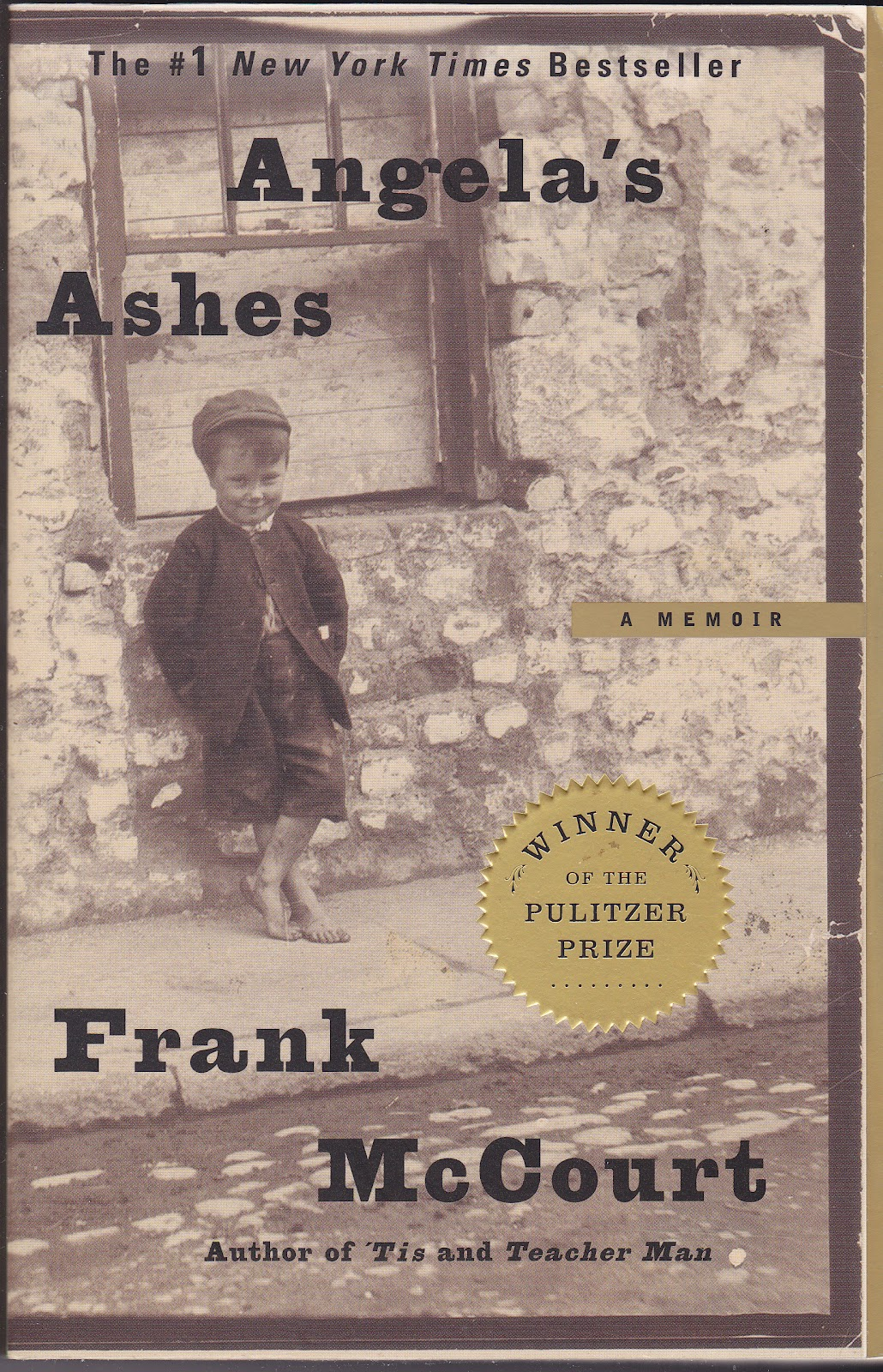 summary angela s ashes Angela's ashes: a memoir summary  frank's mother, angela, has no money to feed the children since frank's father, malachy, rarely works,.